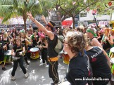 Carnaval 2014 Dautaka44