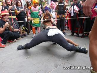 Carnaval 2014 Dautaka47