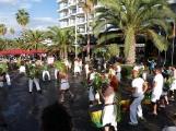 Fiesta de las Flores03