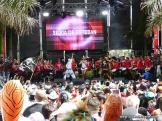 Carnaval 2015 actuaciones07