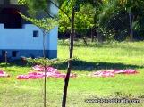 2015-Bloko Lamu D 05