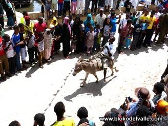 2015-Bloko Lamu H 23