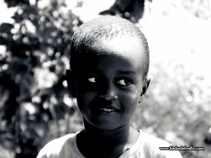 Caras Lamu 2015 BN51