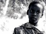 Caras Lamu 2015 BN52