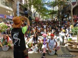 Blokodelvalle Carnaval de Dia SC065