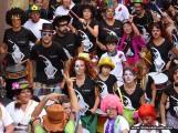 Blokodelvalle Carnaval de Dia SC190