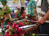 Dautaka Carnaval de Día 201608