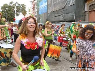 carnaval-de-dia-sc-1-26-2-17-1341