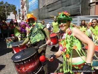 carnaval-de-dia-sc-2-4-3-17-1446