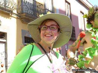 carnaval-de-dia-sc-2-4-3-17-1732