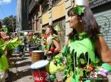 carnaval-de-dia-sc-2-4-3-17-1760