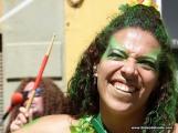 carnaval-de-dia-sc-2-4-3-17-2009