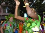 carnaval-de-dia-sc-2-4-3-17-2712