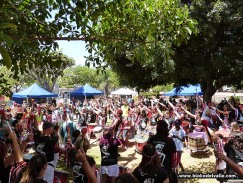 Aula de verano Taco241