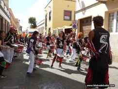 Sardina de la Inclusion LL -0288