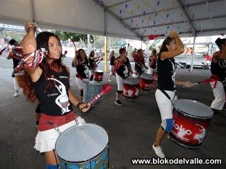 Fiestas Fasnia-2018-- 041